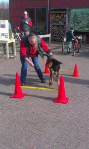 Hondenwandeling 12 maart